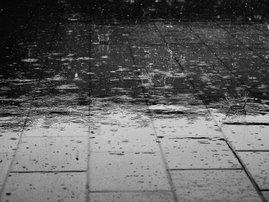 Rain- Weather