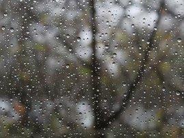 Rain Breakfast