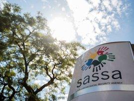 Sassa image