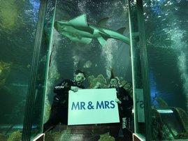 wedding water image
