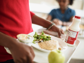School feeding scheme