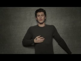 Shawn Mendes In My Blood music video