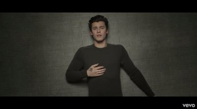 In My Blood Shawn Mendes