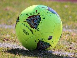 soccerball_Gallo_5.jpg