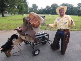 steve bacque mechanical horse
