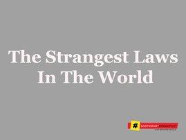 Strangest laws around the world