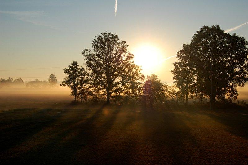Sunrise, Sunny, Morning, Weather
