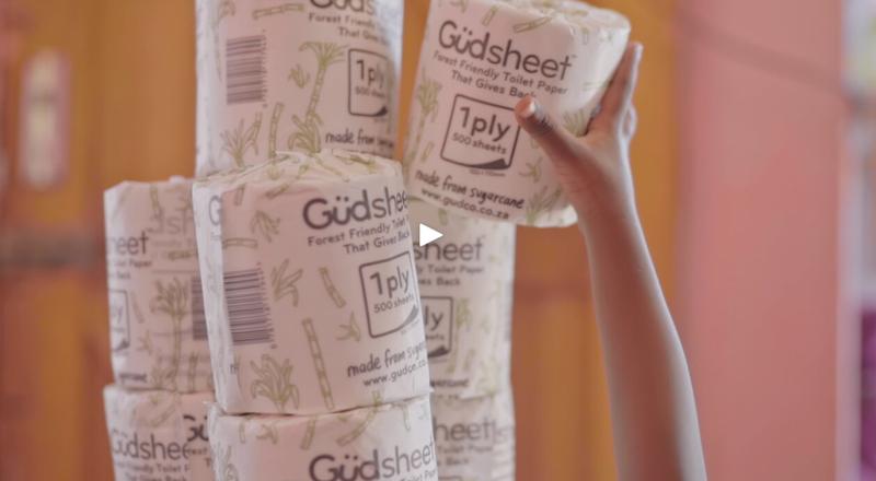 toilet paper initiative