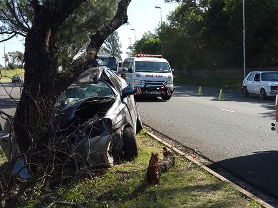 man killed after car crashes into tree in chatsworth