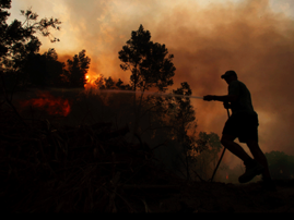 Veld fire in Cape Town