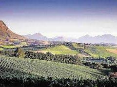 western cape farm_1.jpg