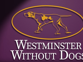 westminster dogs