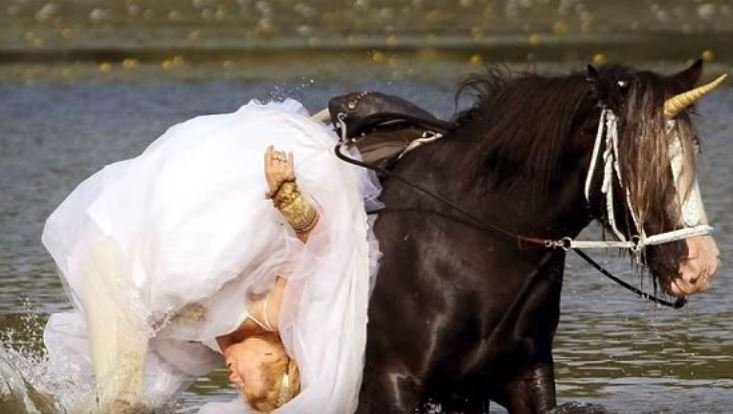 Unicorn Throws Bride Into Lake During Wedding Photoshoot